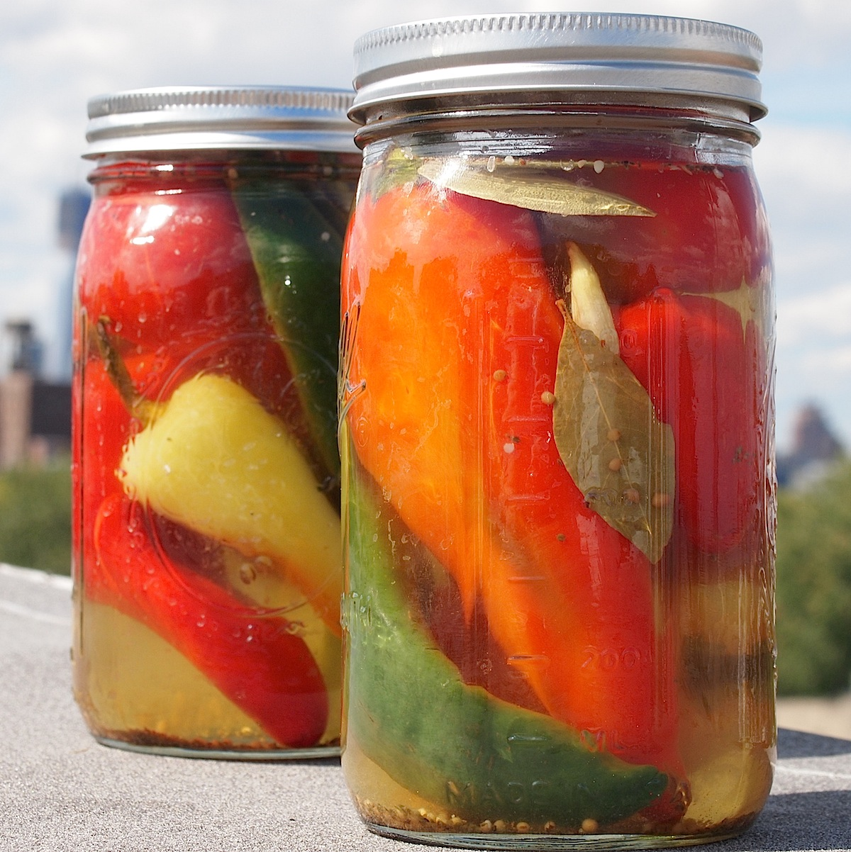 ... as though i should pickled chili peppers in mild pickled peppers green